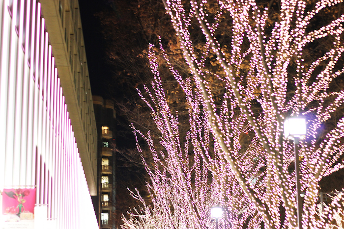 OMOTESANDO in WINTER